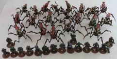 Starship Troopers - The Miniatures Game w/Painted Figures #2