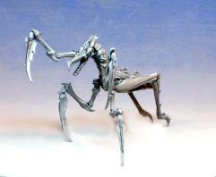 Mantis Assassin/Hunter Bug