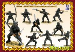 Ninja Warriors