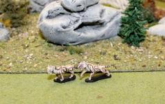 Sabertooth Tigers