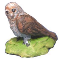 Birds - Barn Owl (5 per pack)