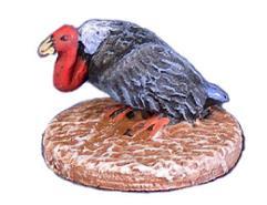 Venue of Mixed Vultures