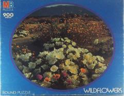 Wildflowers (900)