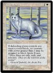 Arctic Foxes (C) (x4)