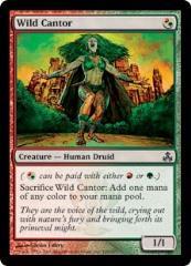 Wild Cantor (C)