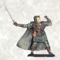 Ranger Swordsman