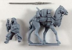 Caravan Guard on Camel #1
