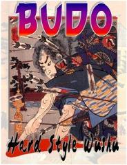 Budo - Hard Style Wushu