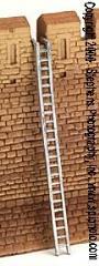 Siege Ladders