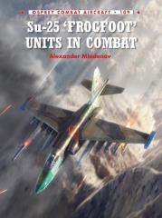 SU-25 Frogfoot Units in Combat
