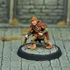 Male Halfling Thief