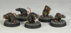 Giant Rat Pack