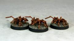 Giant Worker Ants