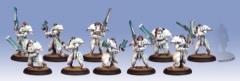 Dawnguard Sentinels Unit Box
