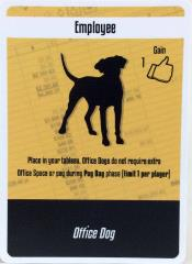 Office Dog Promo