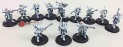 Houseguard Riflemen Collection #2