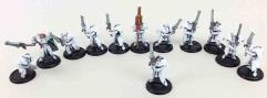 Dawnguard Sentinel Collection #4