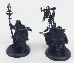 Wolves of Orboros Chieftain and Standard #2