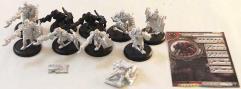 Assault Kommandos Unit #1