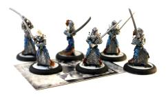 Blighted Nyss Legionnaires Collection #1