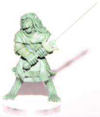 Litorian Warrior