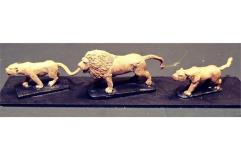 Legian War Lions
