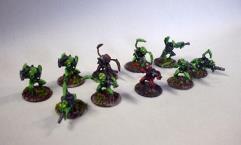 Insolani Squad