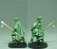 Rafnhildr the Wise