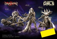 Dark Elves Heroines Box #3