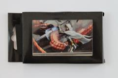 Card Holder - Vanquish the Foul