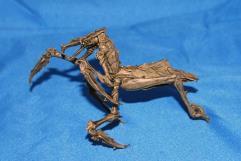 Mantis Assassin