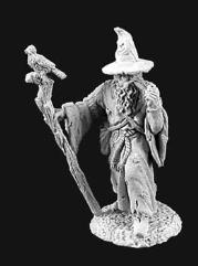 Arthur Wanderhat - Male Wizard w/Staff & Bird Familiar
