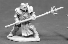 Crusader Defender