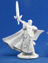 Turanil - Male Elf Paladin