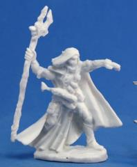 Elquin - High Elf Adventurer
