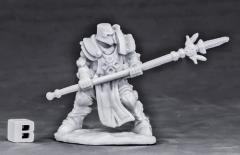 Crusader Defender (Spear)