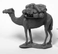 Camel w/Pack