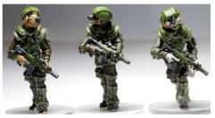 Airmobile Light Infantry Reinforcement Pack