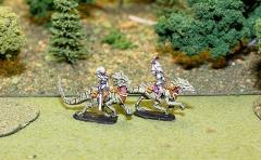 Dark Elf Cavalry