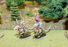 Dark Elf Cavalry Command