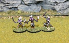 Dark Elf Reavers