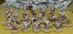 Dark Elf Warband