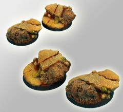 Royal Lion Ruins - 40mm Round Bases #1