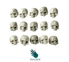 Skulls - Human