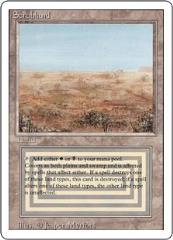 Scrubland (R)