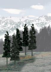 "Pine Trees - Conifer Colors (6"" - 8"")"