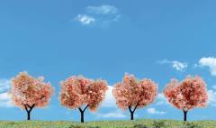 """2""""-3"""" Flowering Trees"""