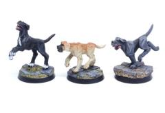 Dogs Set #2 - Mastiffs