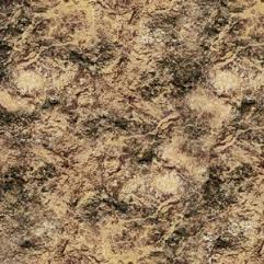 4' x 4' - Desert