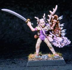Half Elven Druid & Wolf
